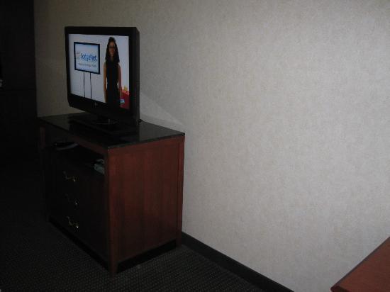 Hilton Garden Inn Fairfield: TV