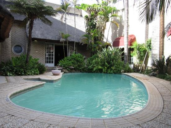 Lion's Guesthouse: Swimming pool