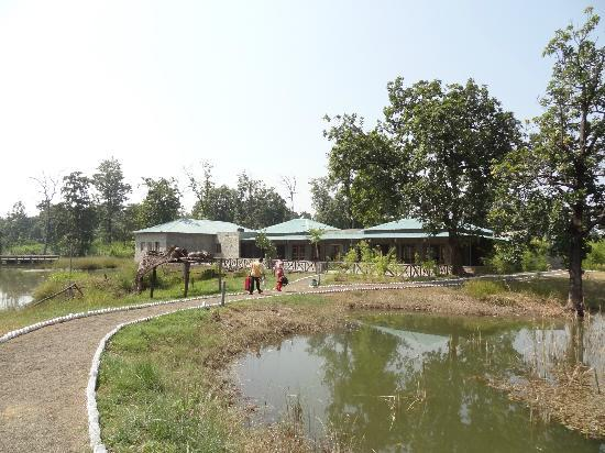 Tiger Lagoon: The resort