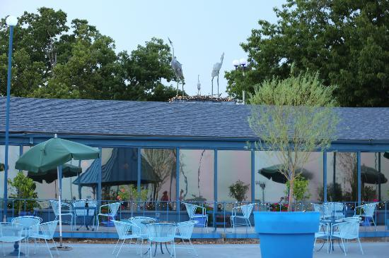 The Blue Heron Restaurant: sitting at the deck looking back at the restaurant