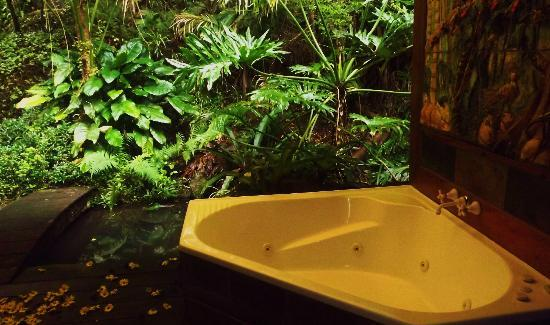 Amazing Wollumbin Palms Retreat at Mt Warning: Outdoor spa next to fish pond