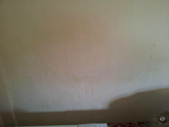 Hotel Sorga Cottages : taches et projections diverses sur le mur
