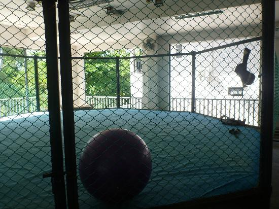 Superpro Samui: MMA Training Cage