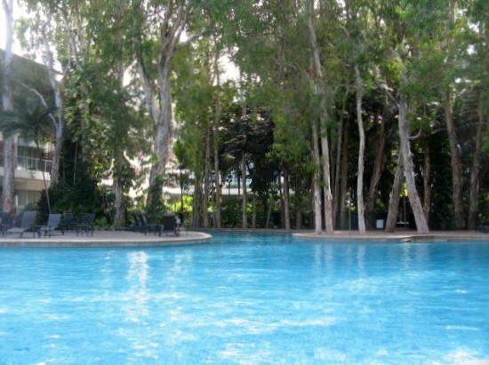 Grand Mercure Rockford Esplanade Palm Cove: pool area