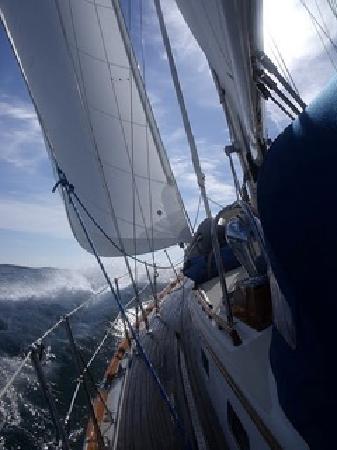 Saga Sailing Adventures