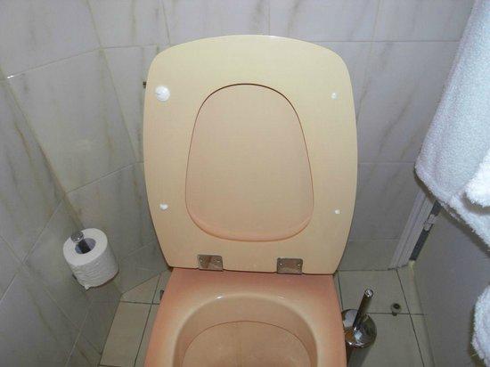Chateau des Bondons: WC-Sitz