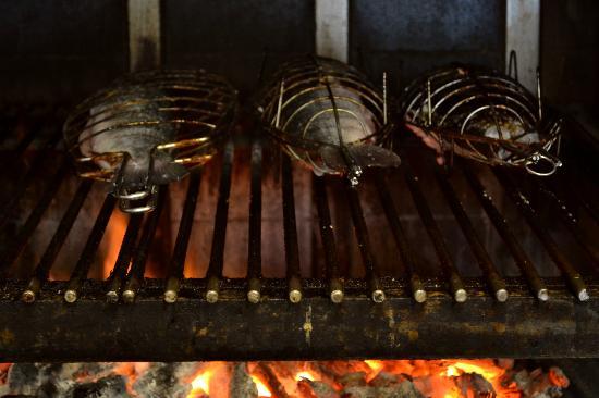 Casa Narcisa: The wood oven