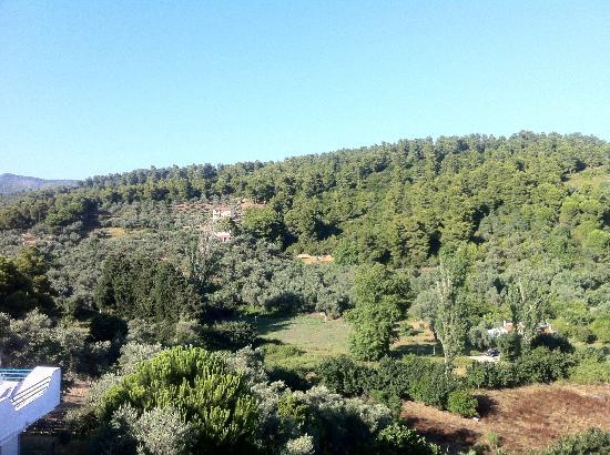Xanthi Studios: view from zanthi studios