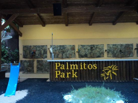 papegaaienshow - Picture of Palmitos Park, Maspalomas - TripAdvisor