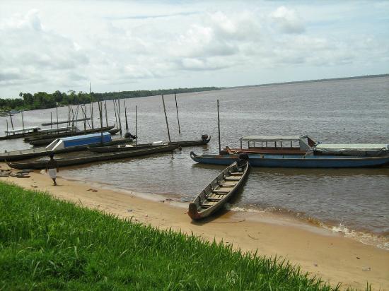Surinam: Galibi, nature reserve, amerindian village, turtles