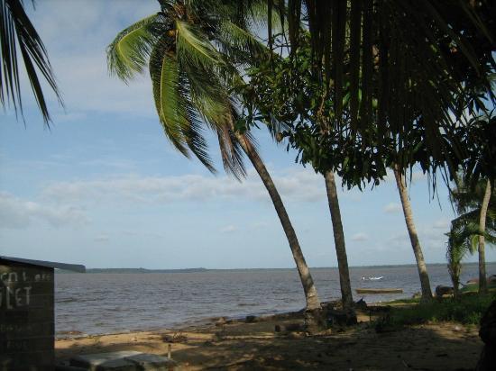 ซูรินาเม: Galibi, nature reserve, amerindian village, turtles