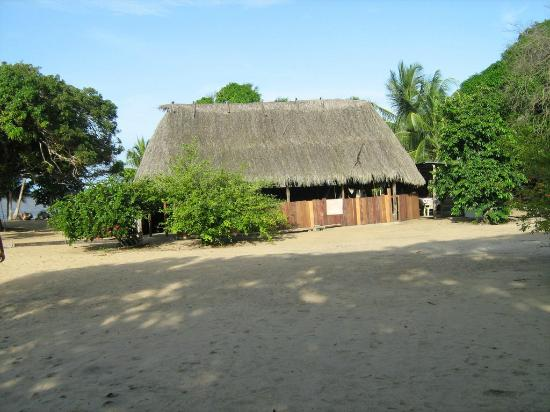 Suriname: Galibi, nature reserve, amerindian village, turtles