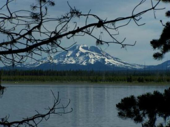 Crane Prairie Reservoir Campground: South Sister from the Tent Camp Area