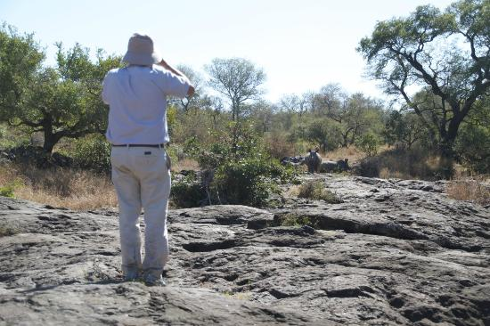 Singita Sweni Lodge: Bush walk. Me watching rhinos on the back