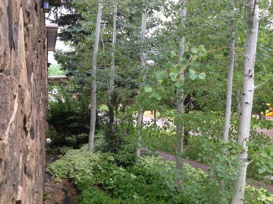 Best Western Antlers : View from front of room on walkway