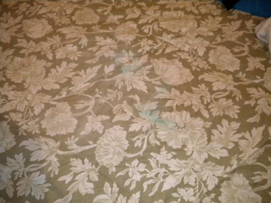 Casa Marina Condominium Hotel on the Beach: Stains on old bedspread