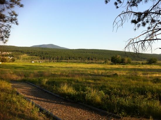 Elizabeth Lake Lodge: wildlife reserve next to lodge