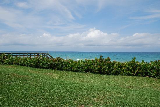 Turtle Reef Club: Ocean view from room