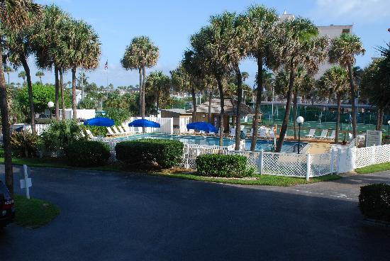 Turtle Reef Club: Pool area