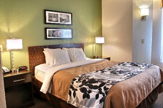 Sleep Inn Buffalo Airport: Queen Room