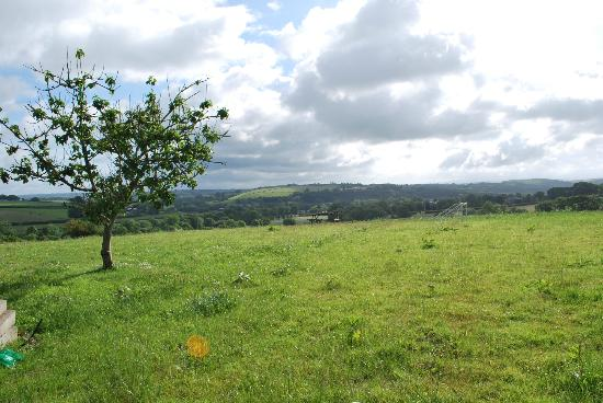 Bamham Farm Cottages: The view across the field
