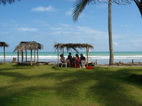 Cocosolo Lodge: Mañana en la playa