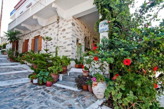 Angeliki Pension: χώρος υποδοχής και πληροφοριών του ξενοδοχείου