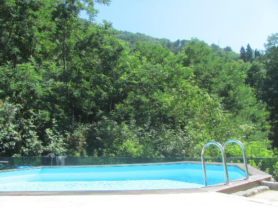 Bed & Breakfast L'Agrifoglio: piscina