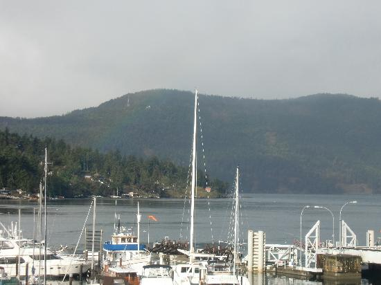 Brentwood Bay Resort & Spa: View from our room #2