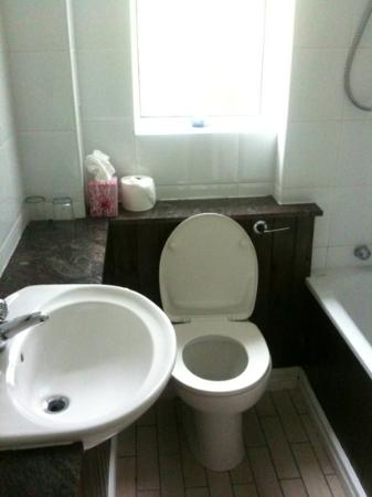 Grove Lodge Riverside Guest House: spotless bathroom