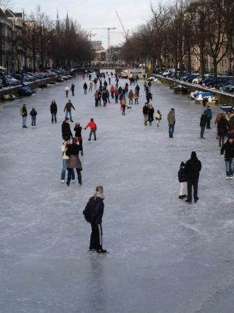 Bees B&B: Skating on the Keizersgracht