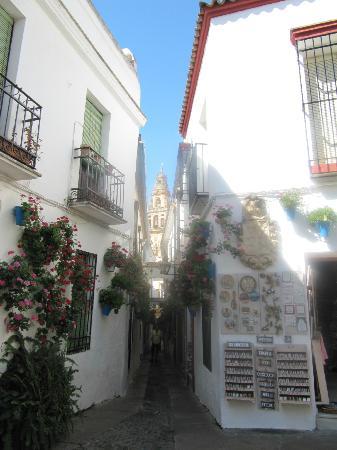Balcon de Cordoba: the back door