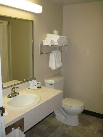 AmericInn Lodge & Suites Silver City: Bathroom