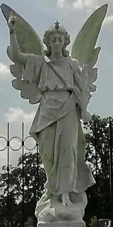 Stone Angel : Look homeward angel.