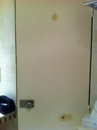 "Vieux Marais: ""new"" bathroom door - holes/patch work"