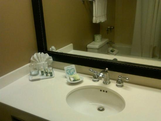 Dex Media Hotel and Conference Center : bathroom