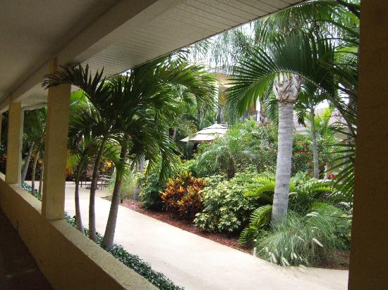 The Hotel Sol: Courtyard view