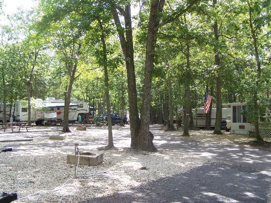 Seashore Campsites & RV Resort : street view
