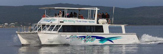 Albany Ocean Adventures