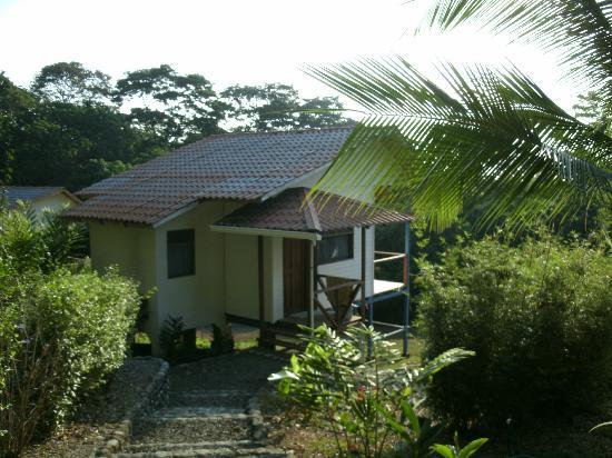 Osa Clandestina: My cabin