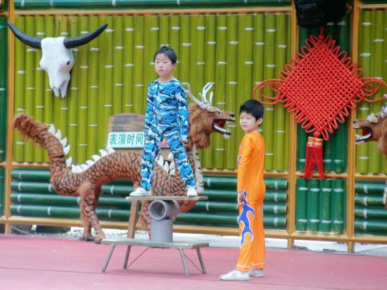 Guangzhou Zoo: acrobats