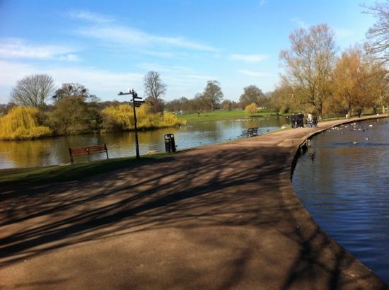 Verulamium Park