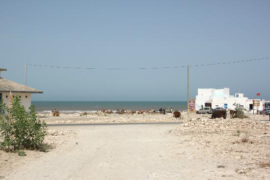 Windy Kaouki : Weg zum Strand