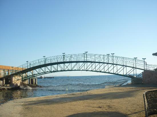 Desert Rose Resort: the bridge