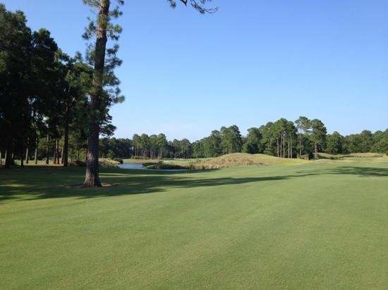 Hilton Head National: 4th