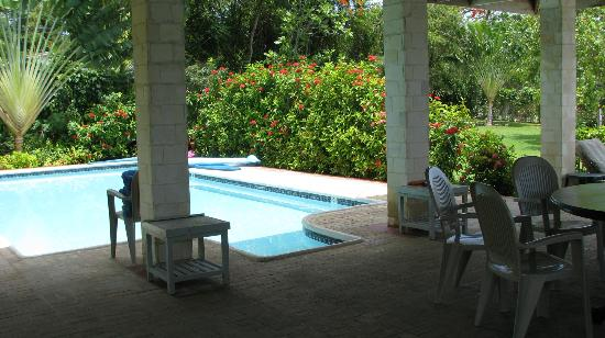 Bluefields Bay Villas: Private pool