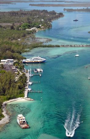 Andros Lighthouse Yacht Club and Marina: Fresh Creek from the air.