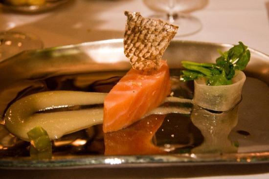 Salmon (43644861)