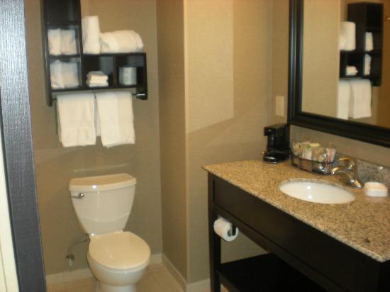 Hampton Inn & Suites Saginaw: Nice bathroom