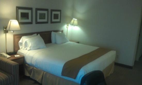 Holiday Inn Express Janesville - I-90 and US Highway 14: Comfy King